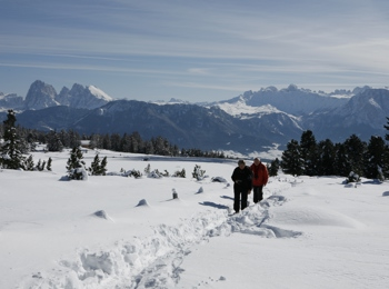 Alpe di Villandro