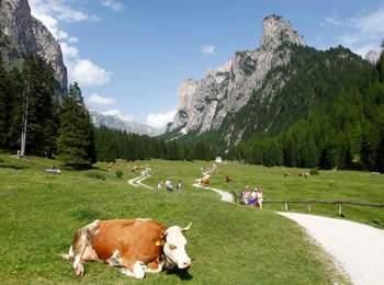 Area escursionistica Val Gardena