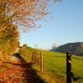 Autumn in Feldthurns / Velturno