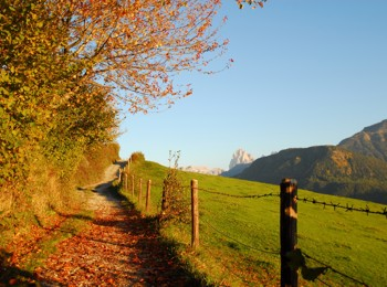 Autumn in Feldthurns
