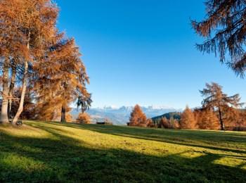 Autumn in Jenesien