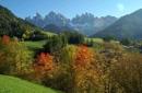 Castagne - vino - escursioni nel autunno