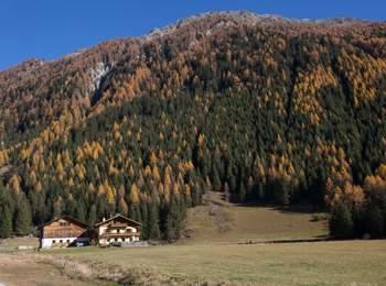 Bauernhaus in Vals
