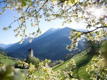 Castel Giovo a S. Leonardo in Passiria