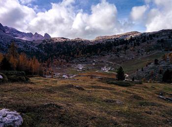 Col Bechei nel Parco Naturale Fanes-Senes-Braies