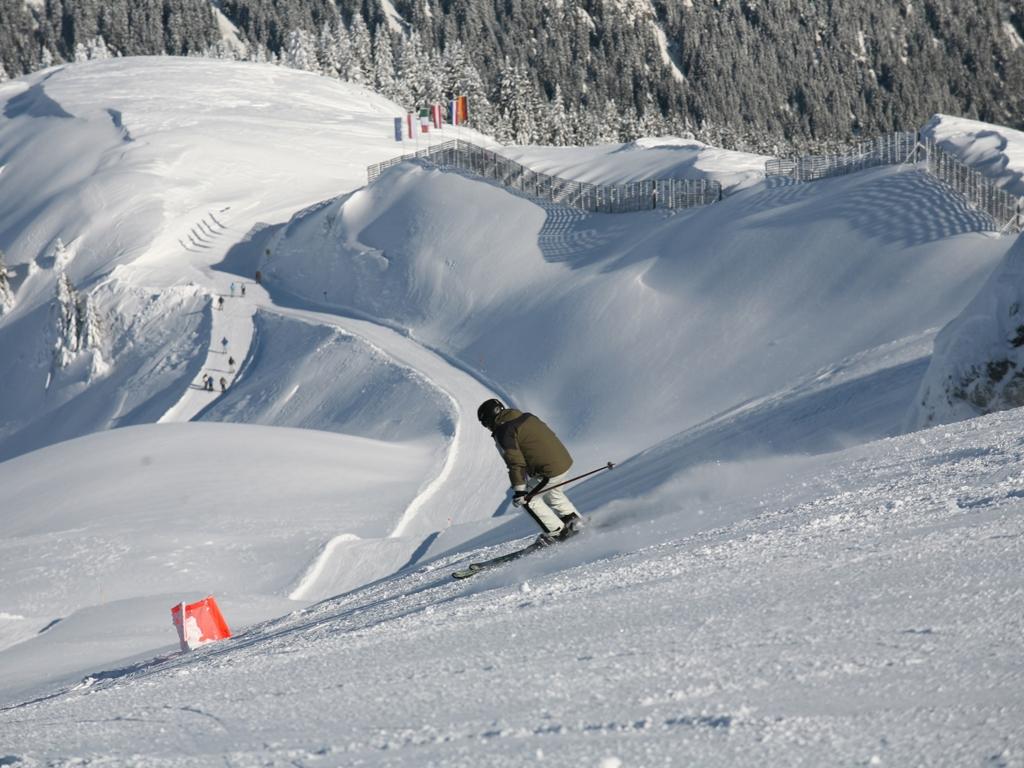 image: Early Bird Skiing