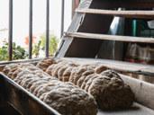 Festa del pane: il nostro pane quotidiano