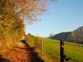 Südtiroler Almgschichten