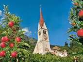 Algunder Apfellehrpfad und Klosterbauerhof
