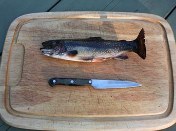 Fischen in Südtirol