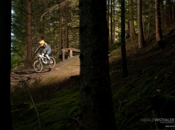 Freeride & Downhill in South Tyrol