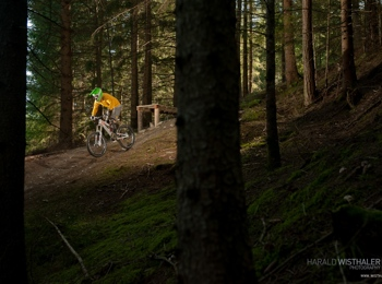 d78c3066e8a Downhill biking on Mt. Kronplatz in South Tyrol, freeriding trail ...