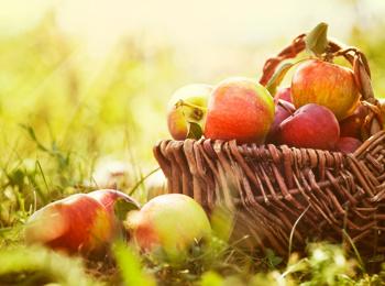 Frutta dalla Val Venosta