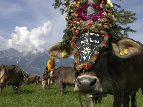 Fügen nella valle dello Zillertal