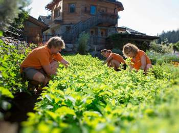 Giardino delle erbe Bergila