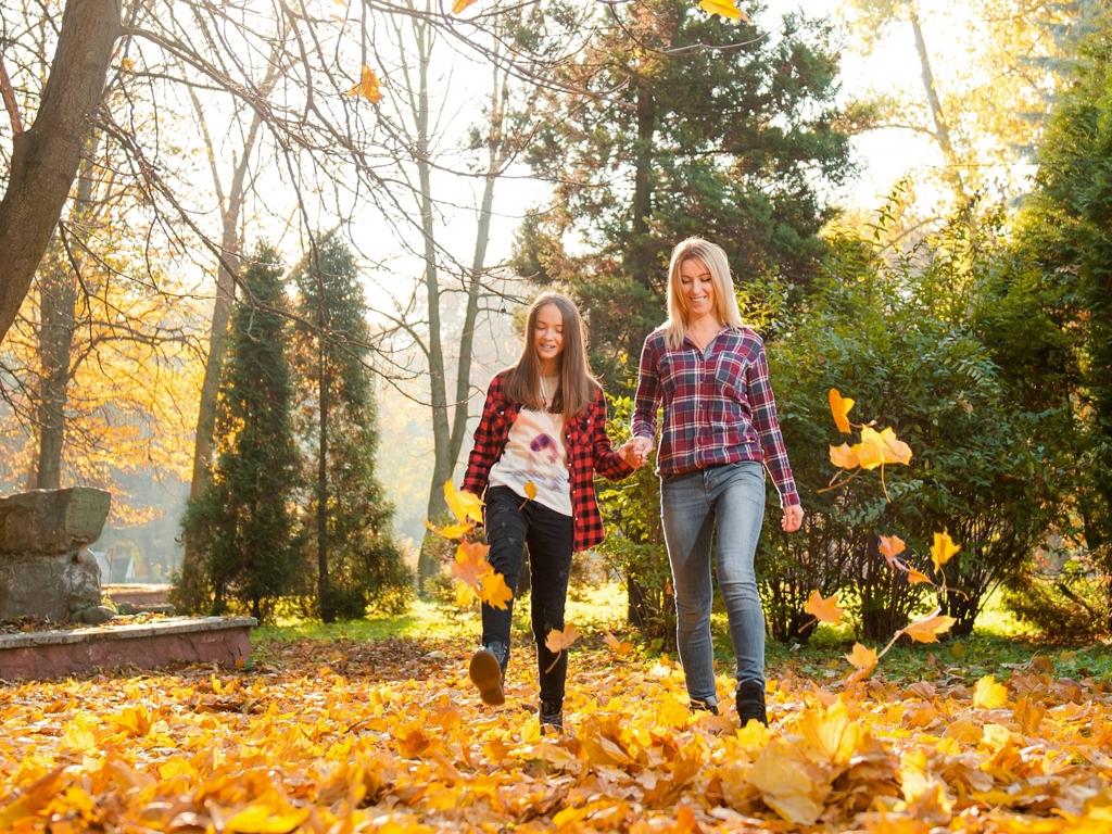 image: Golden leaves