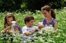 Happy Family  - bambini fino 8 anni gratuiti -