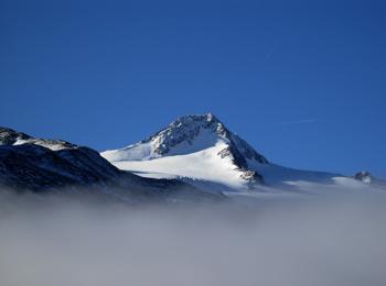 high-alpine tour - on the Similaun