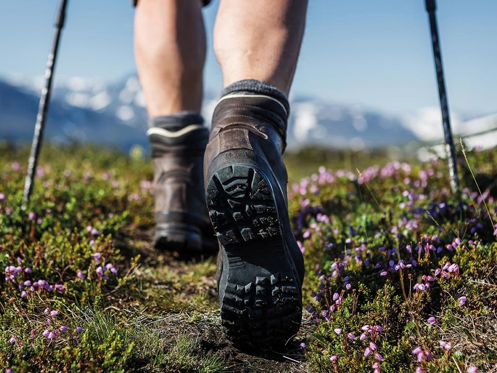 image: Hiking days