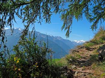 Hiking on Vinschgau high-alpine path