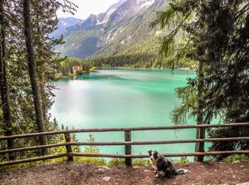Hiking with dogs around Lake Antholz
