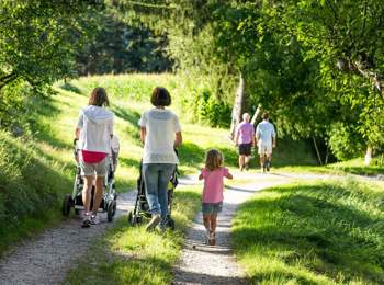 Hiking with strollers