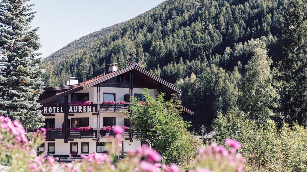 Hotel Auren