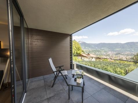 Panorama Suite Vitis-4