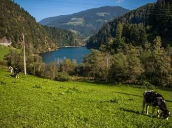 Lago di Alborelo