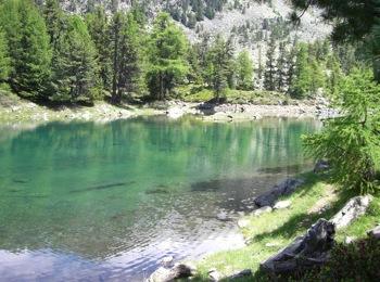 Lago Zirmtal