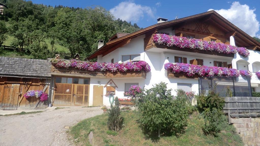 Lingerhof Ferienwohnungen - Urlaub auf dem Bauernhof
