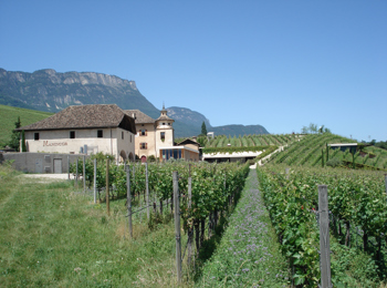 Manincor - THE South Tyrolean winery