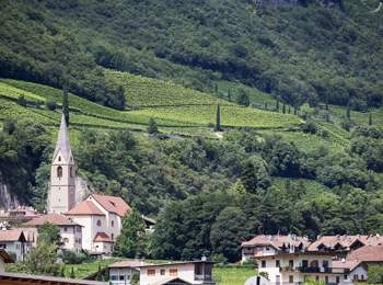 Margreid im Süden Südtirols