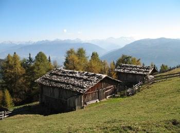 Moser pasture
