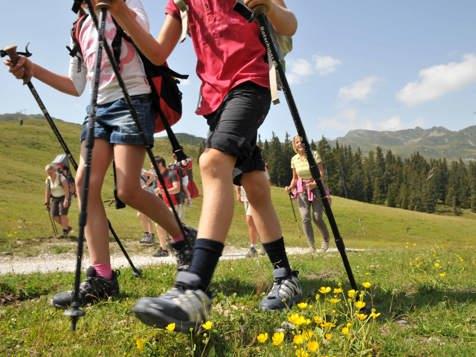 Mountain - Trekking