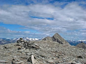 Mt. Moosstock