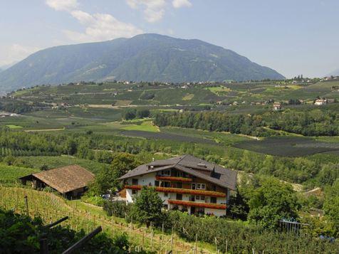 Pension Petaunerhof - Schenna - Meran und Umgebung