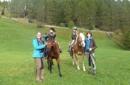 Erlebnis - Reiten am Bauernhof im Sarntal Südtirol