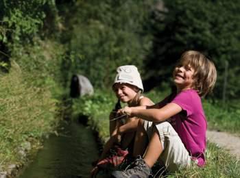 Rogge in Alto Adige