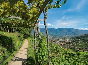 Sentiero della roggia a Lagundo