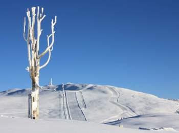 Ski area Rittner Horn