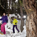 Skigebiete Obereggen