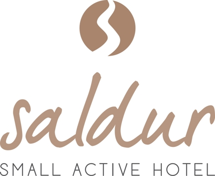 Small Active Hotel Saldur Logo