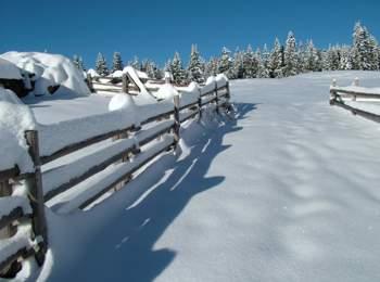 Sparkling winter landscape in Mölten