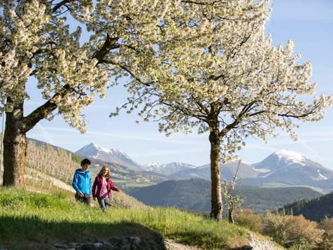 Spring hike in Brixen