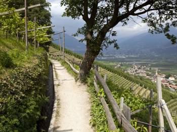 Südtiroler Waalweg mit herrlichem Ausblick