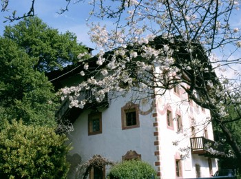 The Malerhaus in spring