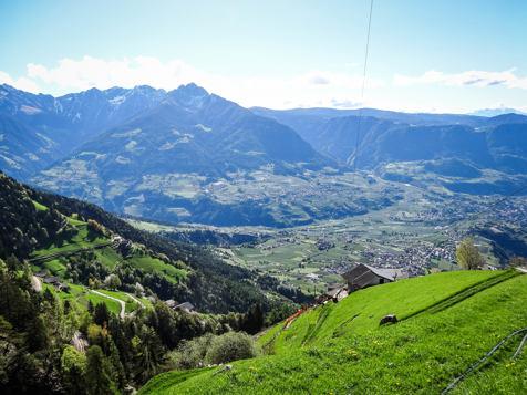 The steepest farm