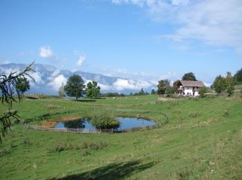 Trodena