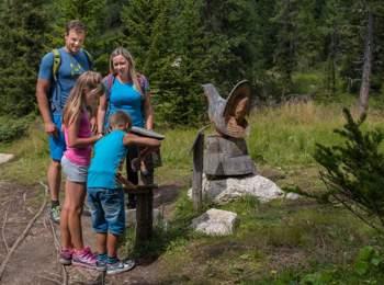Tru di tiers – on the trail of wild animals